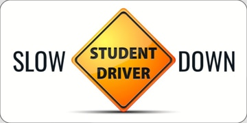 Picture of Drive Safely 13